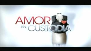 Amor-en-custodia  colombia - logo