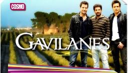 Gavilanes estreno